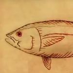 Sushiglobalcatch